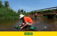 Gold panning on the stream